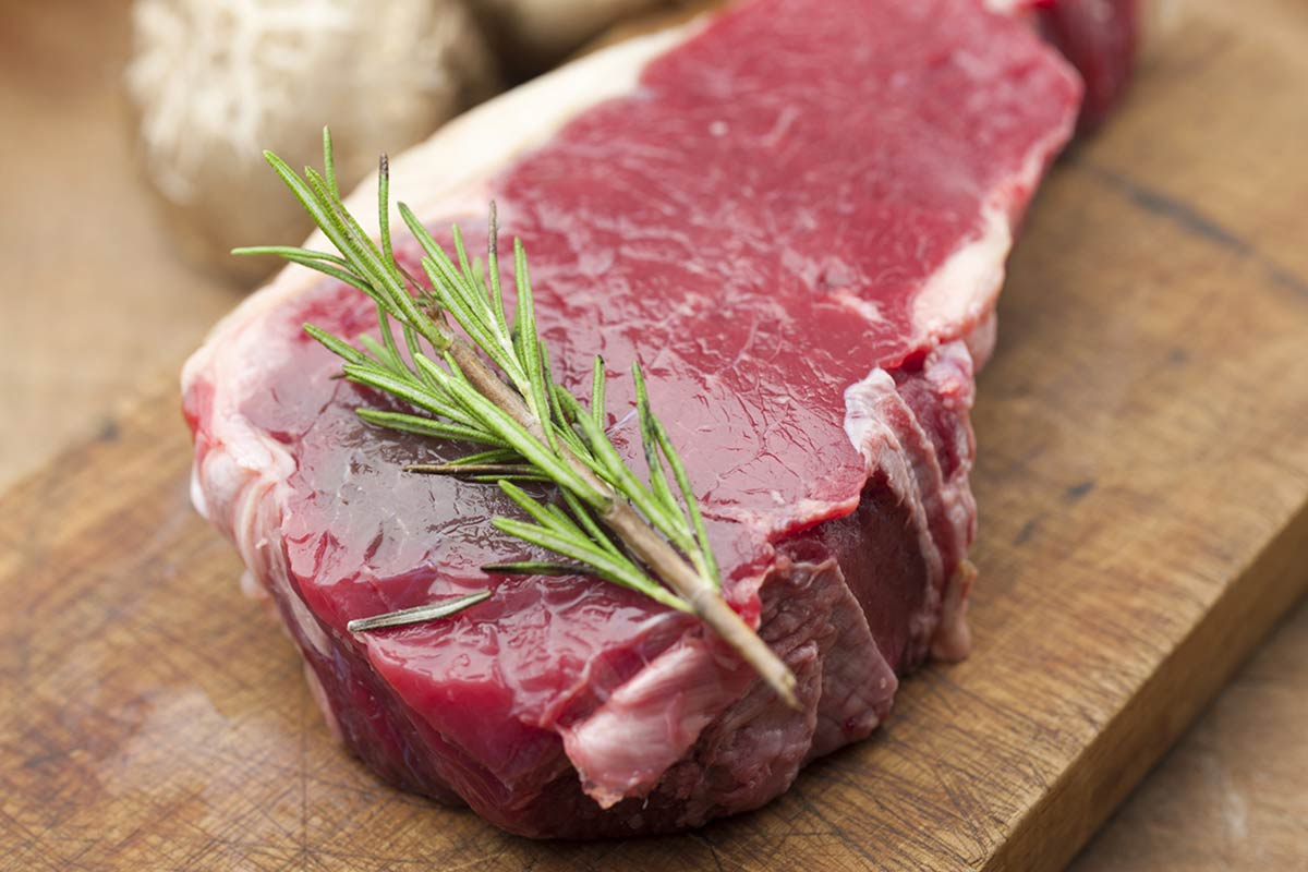 Nutrition Fact: Bison is Protein-Packed