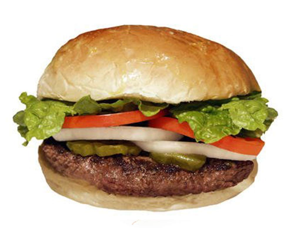Bison 100% Burgers 4 oz (12 packs of 4, count 48)